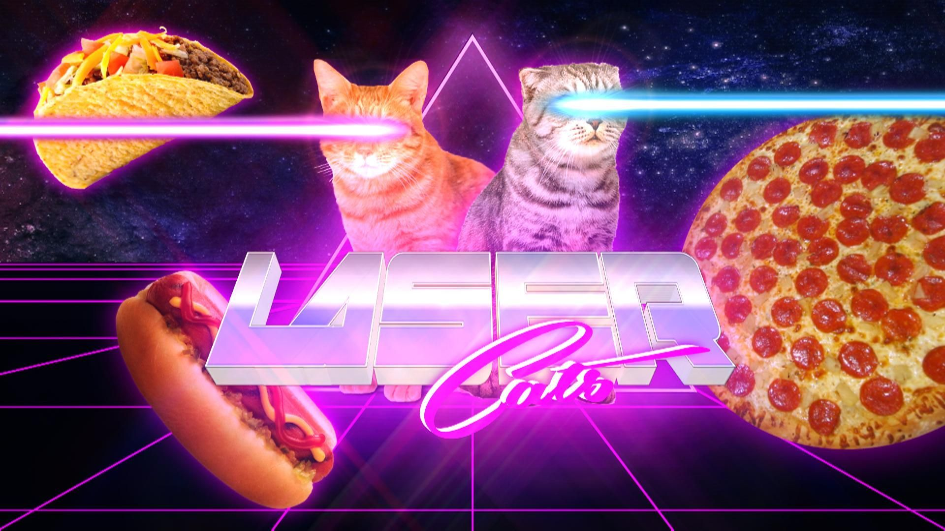1920x1080 laser cats | cats in 2019 | Cat wallpaper, Space cat, Cats