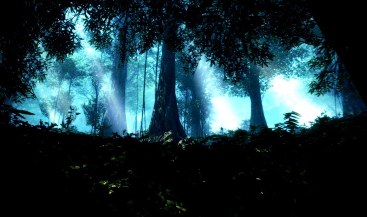 1216x720 Forests Trees Abstract Forest Dark Nature Wallpapers ...