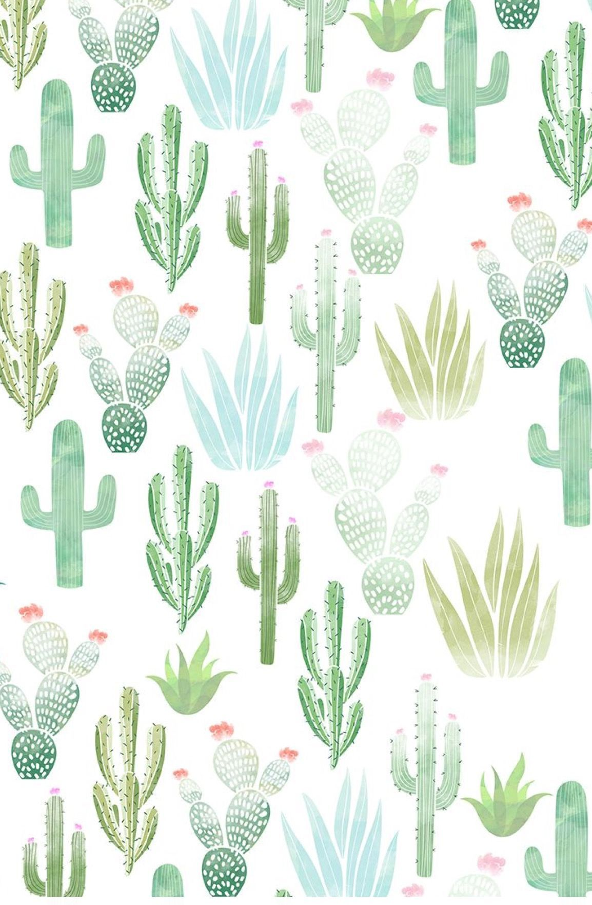 1154x1763 Cacti Wallpapers