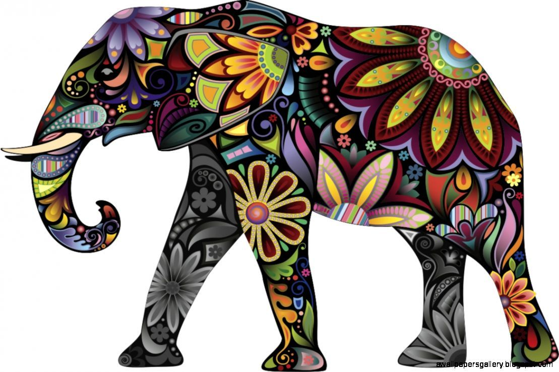 1109x738 √ Colorful Elephant Pictures
