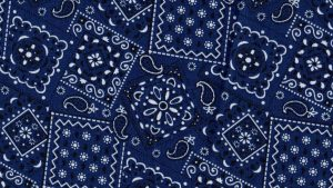 Blue Bandana Wallpapers – Top Free Blue Bandana Backgrounds