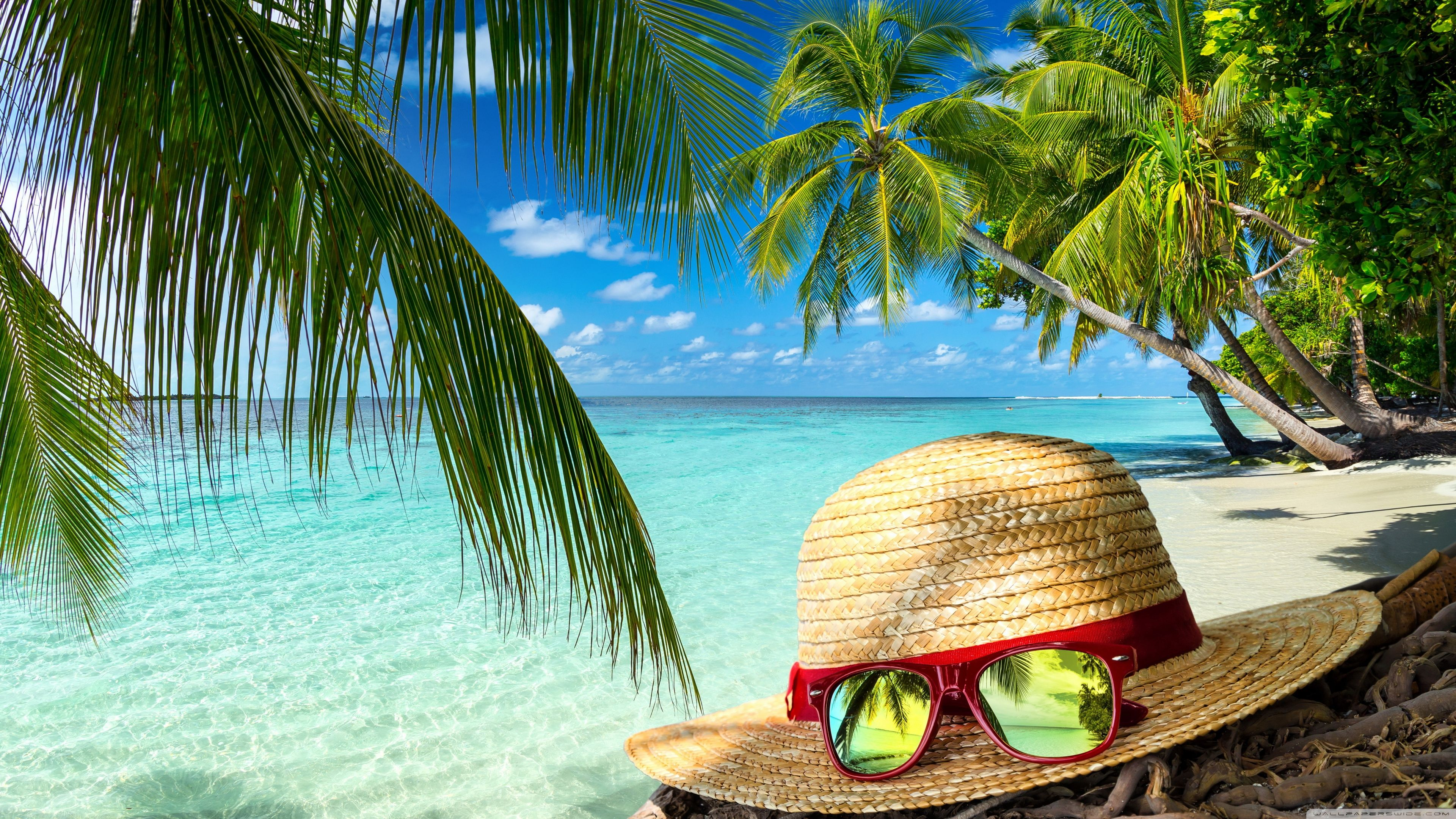 3840x2160 Clear Sea Water, Beach Hat and Sunglasses, Palm Trees ❤ 4K HD ...
