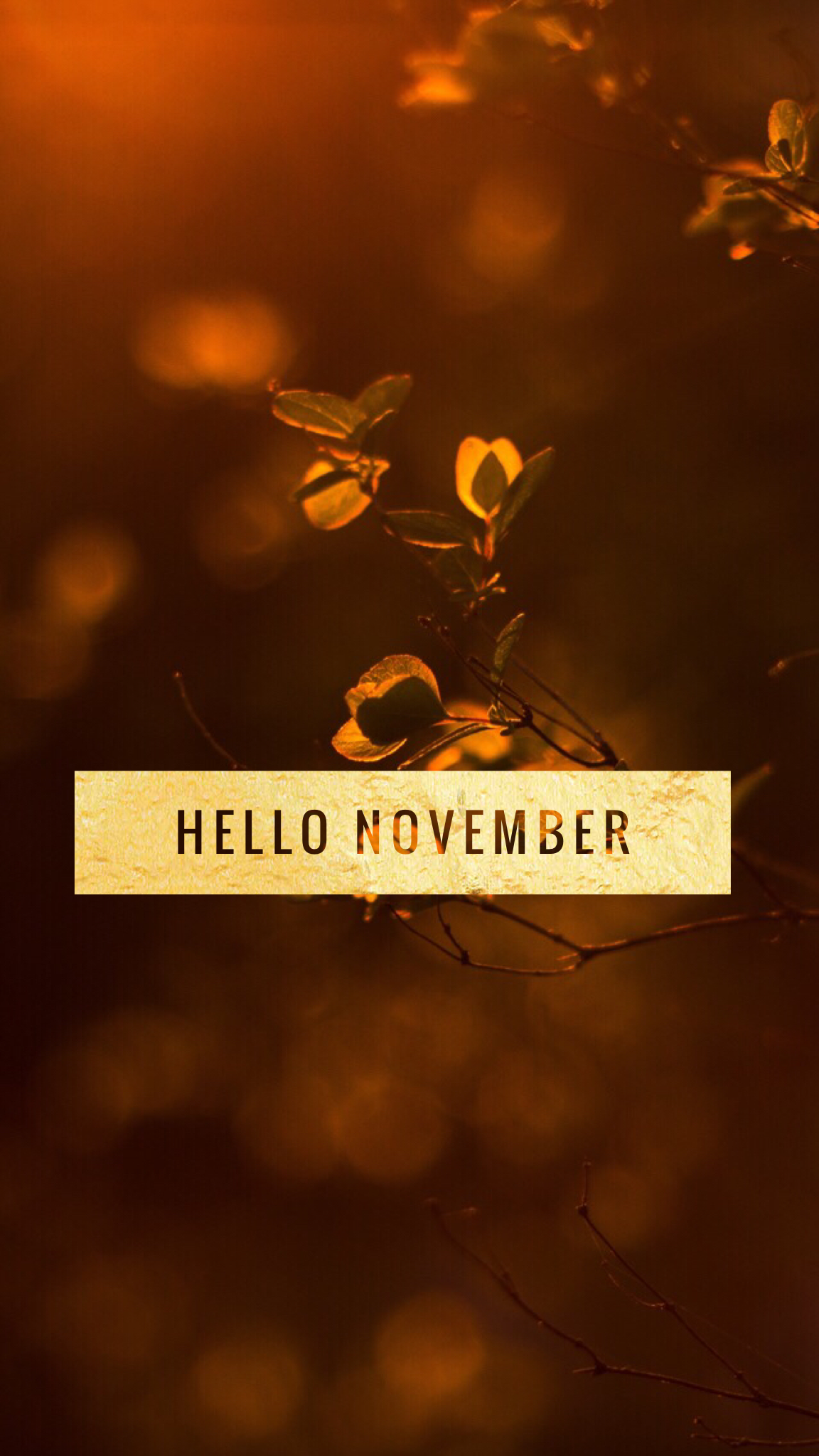 1152x2048 hello #november #quote #autumn #harvest #wallpaper #iphone ...