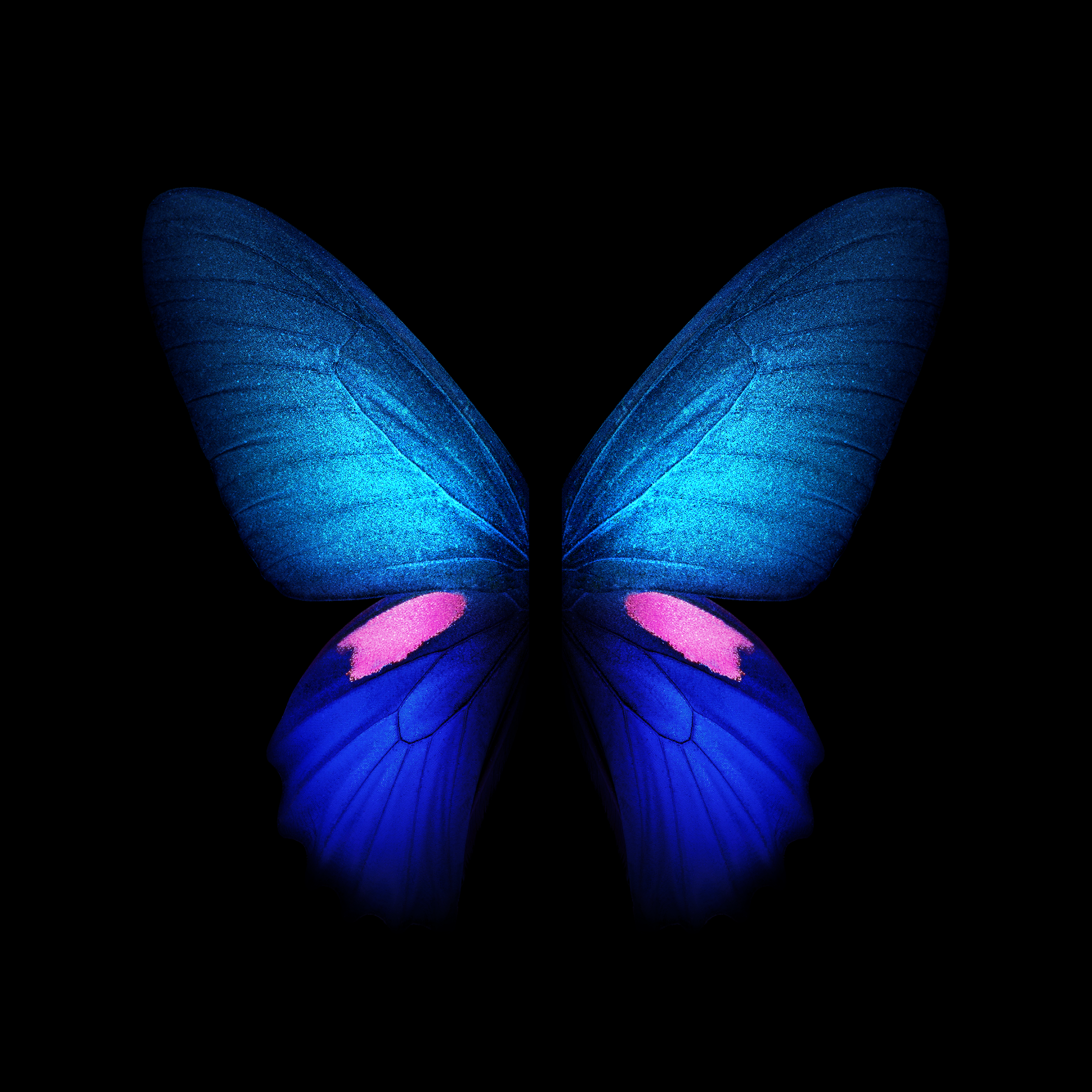 2152x2152 You can download the Live Wallpapers from the Galaxy Fold ...