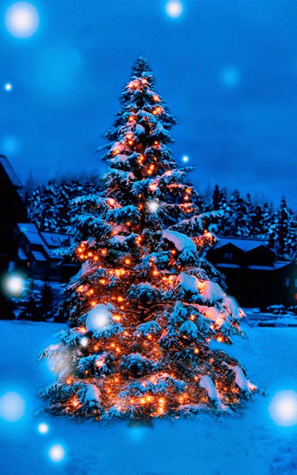 950x1520 Download Christmas Tree Lights Decoration Snow Covered Free ...