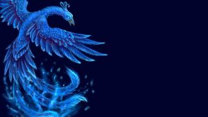 Blue Phoenix Wallpapers – Top Free Blue Phoenix Backgrounds
