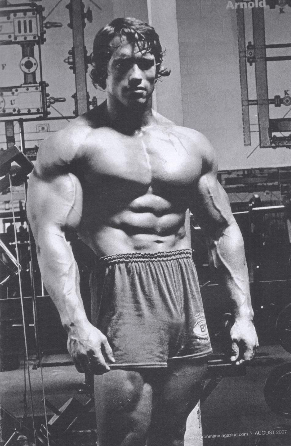 950x1453 Arnold Bodybuilding Wallpapers