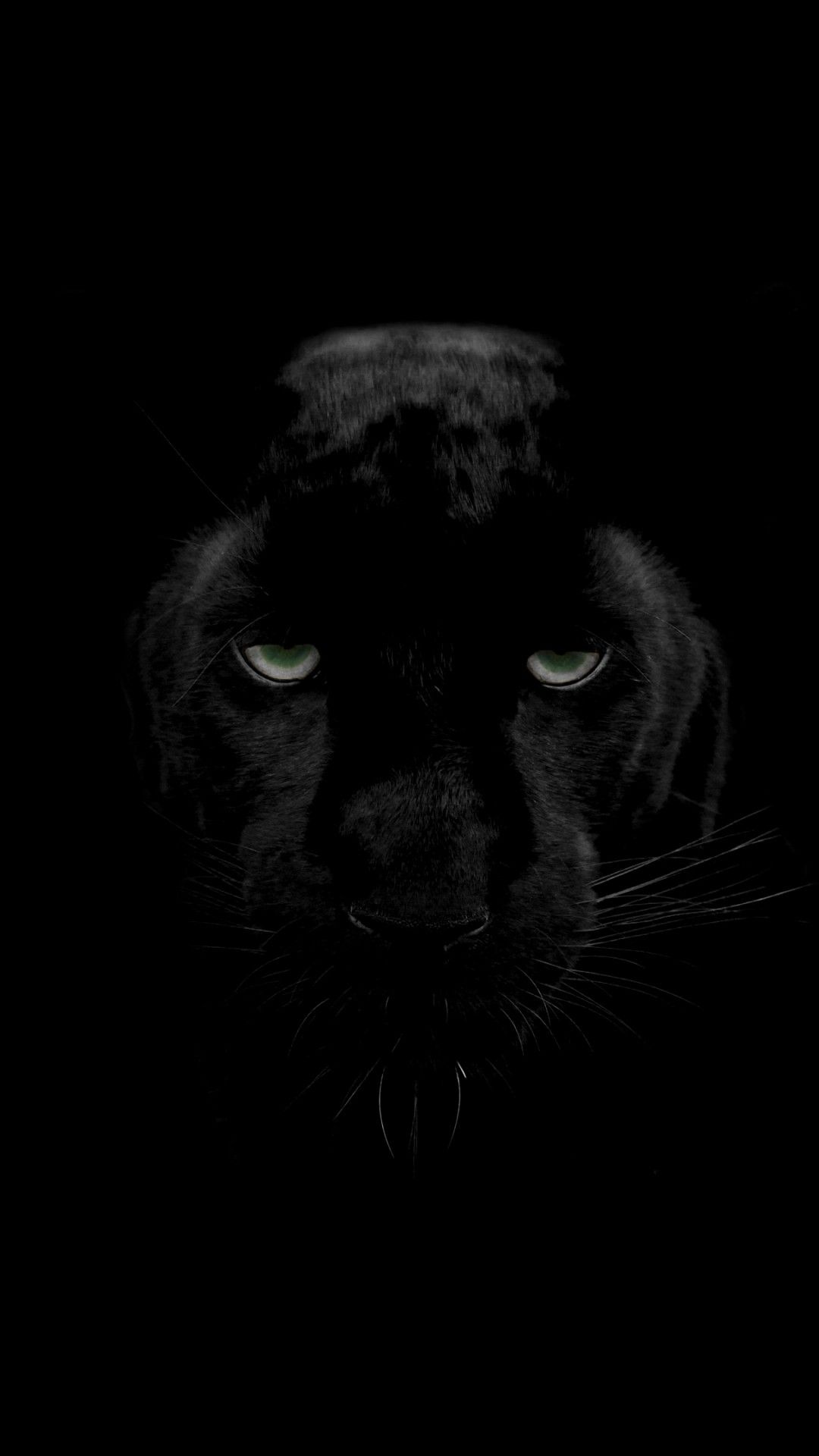1080x1920 Black Panther 4K Wallpapers | HD Wallpapers | ID #25460