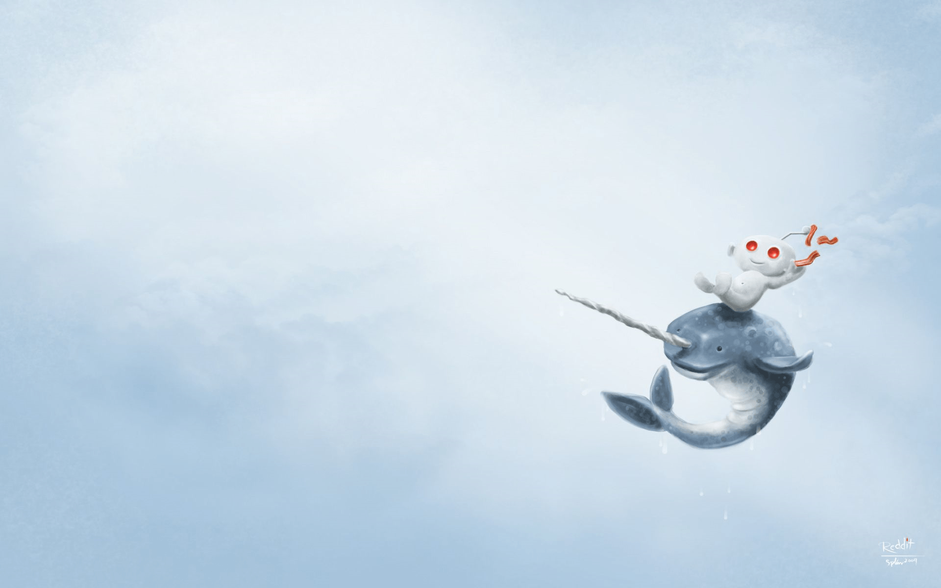 1920x1200 Top 80 Narwhal Wallpaper - HD Animal Spot