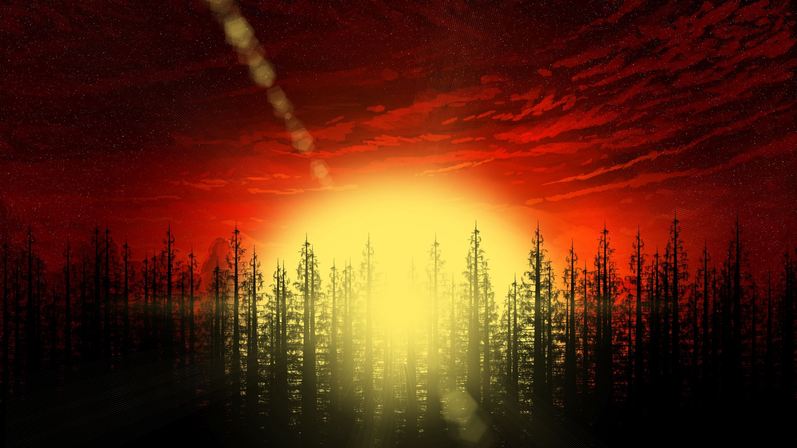 2560x1440 Forest Trees Abstract, HD Artist, 4k Wallpapers, Images ...