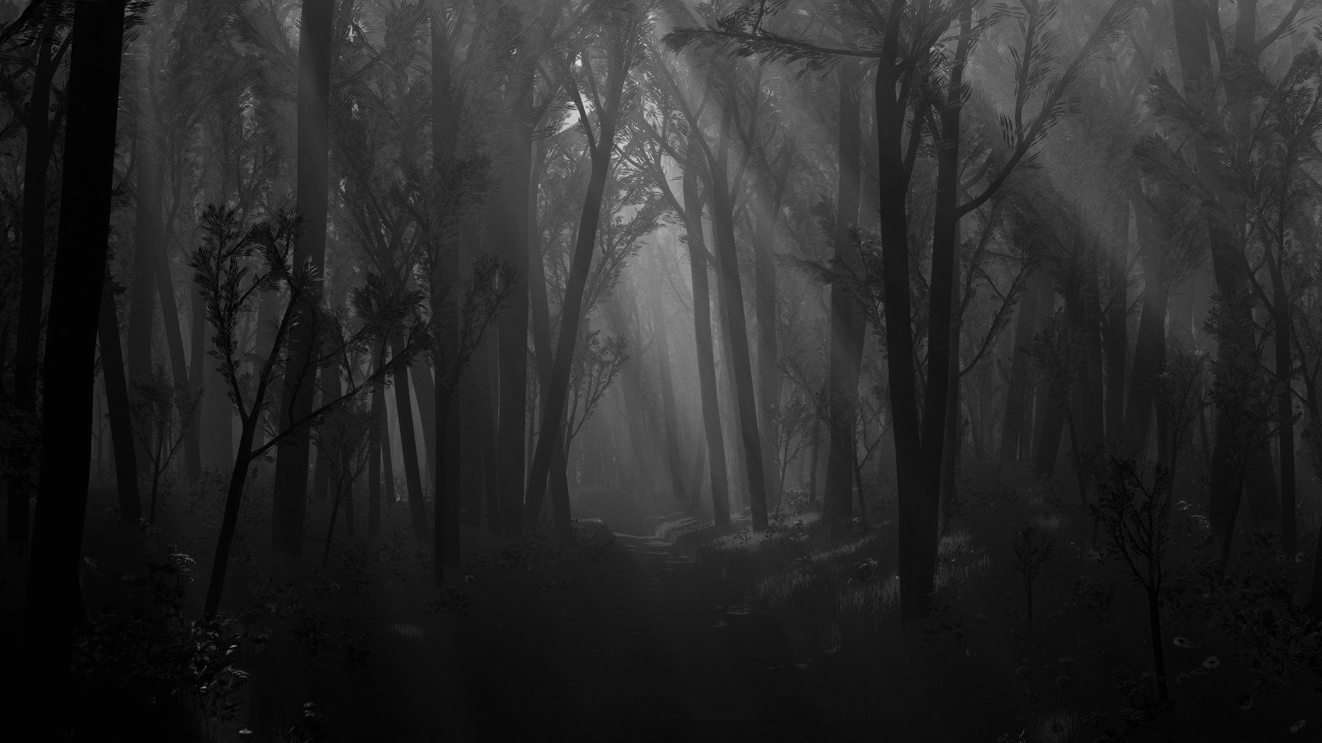 1920x1080 Haunted Forest Wallpaper (59+ images)