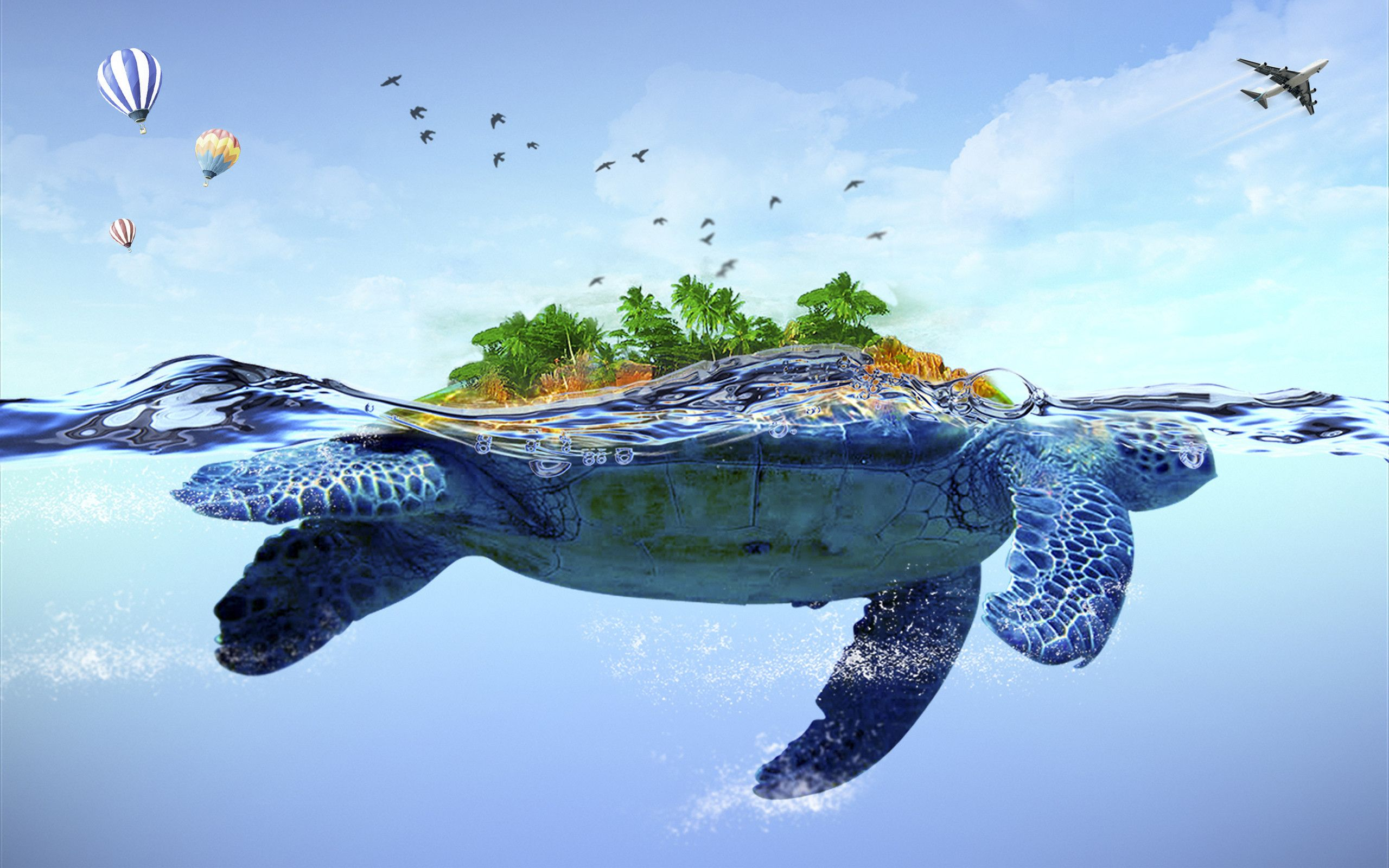 2560x1600 Baby Turtle Wallpaper (54+ images)