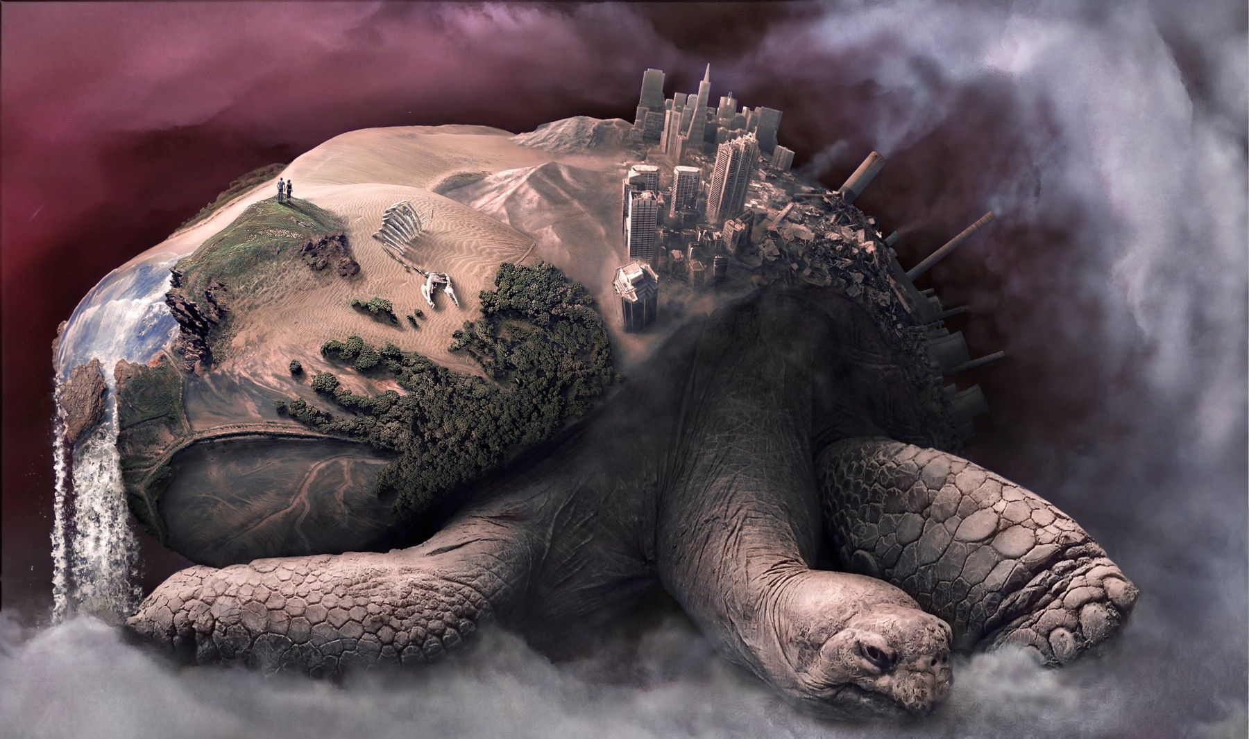 1800x1066 2964449 turtle artwork wallpaper and background   Abstract ...