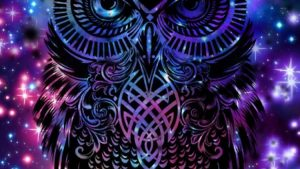 Galaxy Owl Wallpapers – Top Free Galaxy Owl Backgrounds