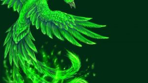 Green Phoenix Wallpapers – Top Free Green Phoenix Backgrounds