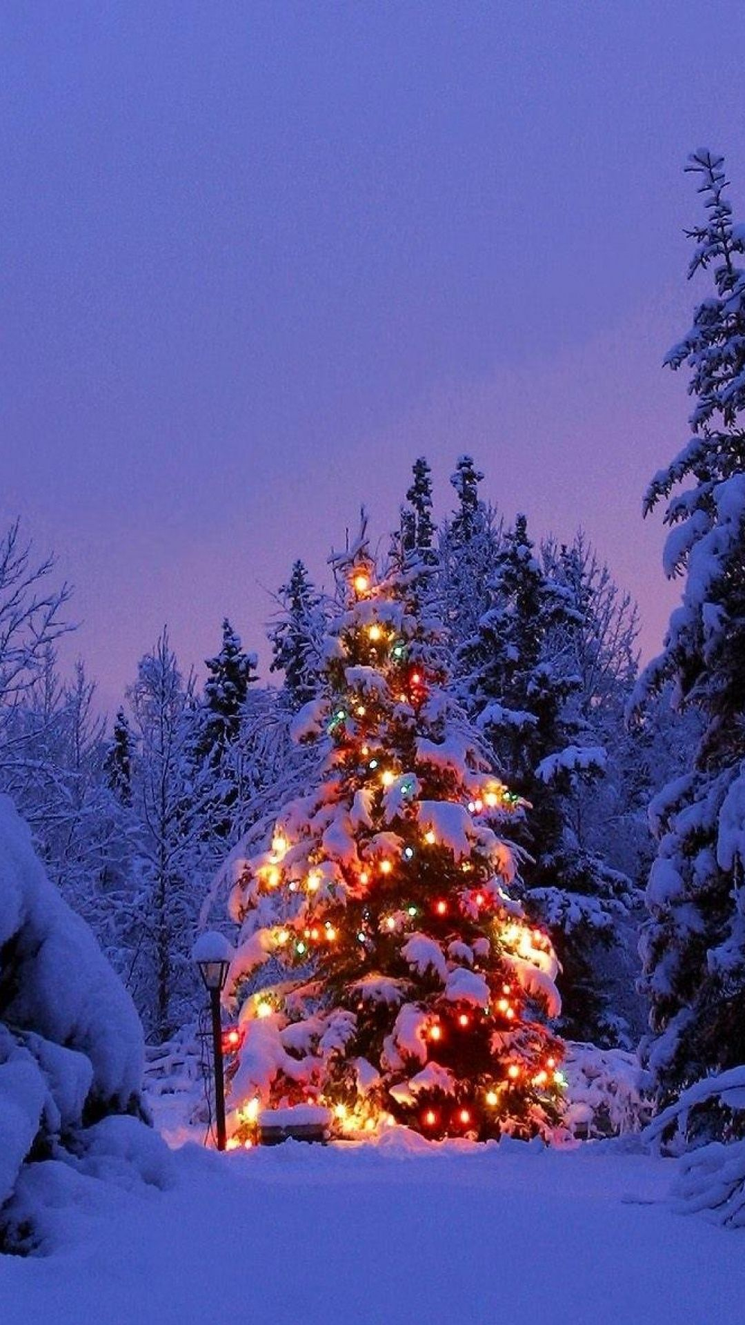 1080x1920 Snowy Decorated Christmas Tree Android Wallpaper free download
