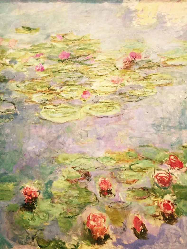 788x1050 Water lilies (red)