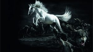 Horses and Wolves Wallpapers – Top Free Horses and Wolves Backgrounds