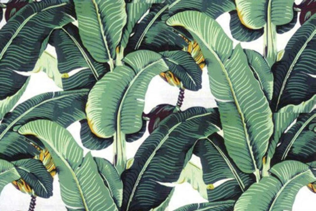 1086x726 Beloved palm-print wallpaper can be yours, too | The Star