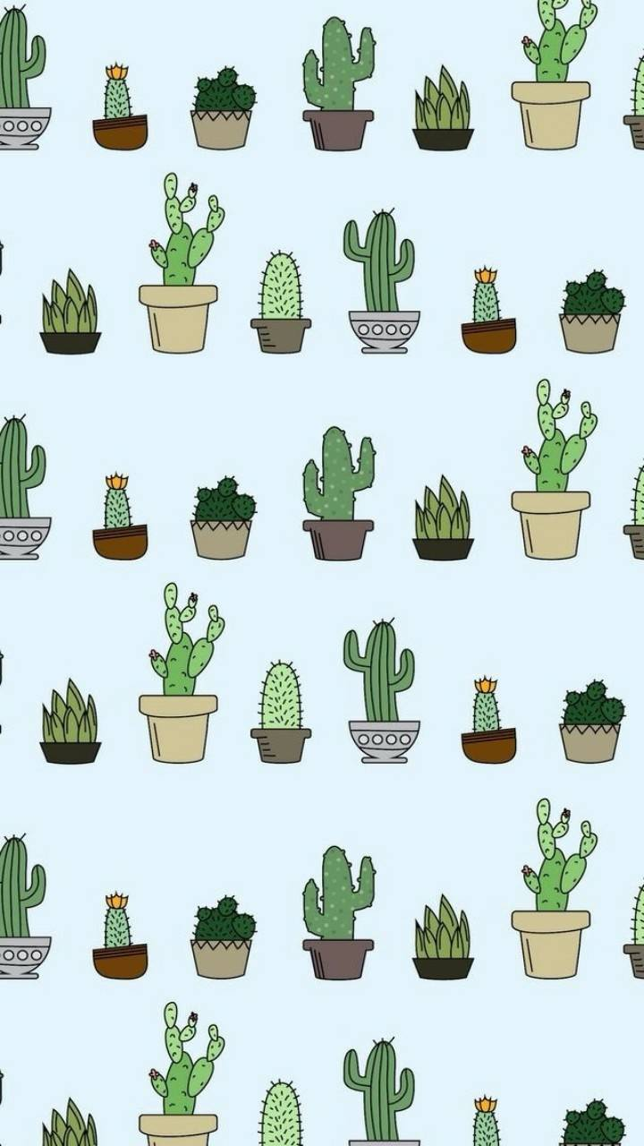 720x1280 Cactus Patterns Wallpaper by Gid5th - 80 - Free on ZEDGE™