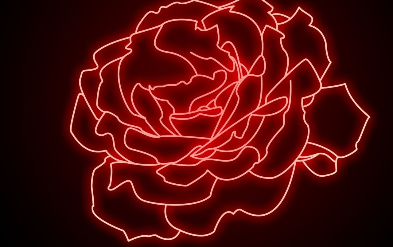 1280x804 Neon Rose wallpapers | Neon Rose stock photos
