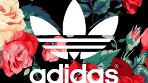 Adidas Flower Wallpapers – Top Free Adidas Flower Backgrounds
