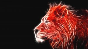 Red Lion Wallpapers – Top Free Red Lion Backgrounds