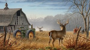 Deer Hunting Desktop Wallpapers – Top Free Deer Hunting Desktop Backgrounds