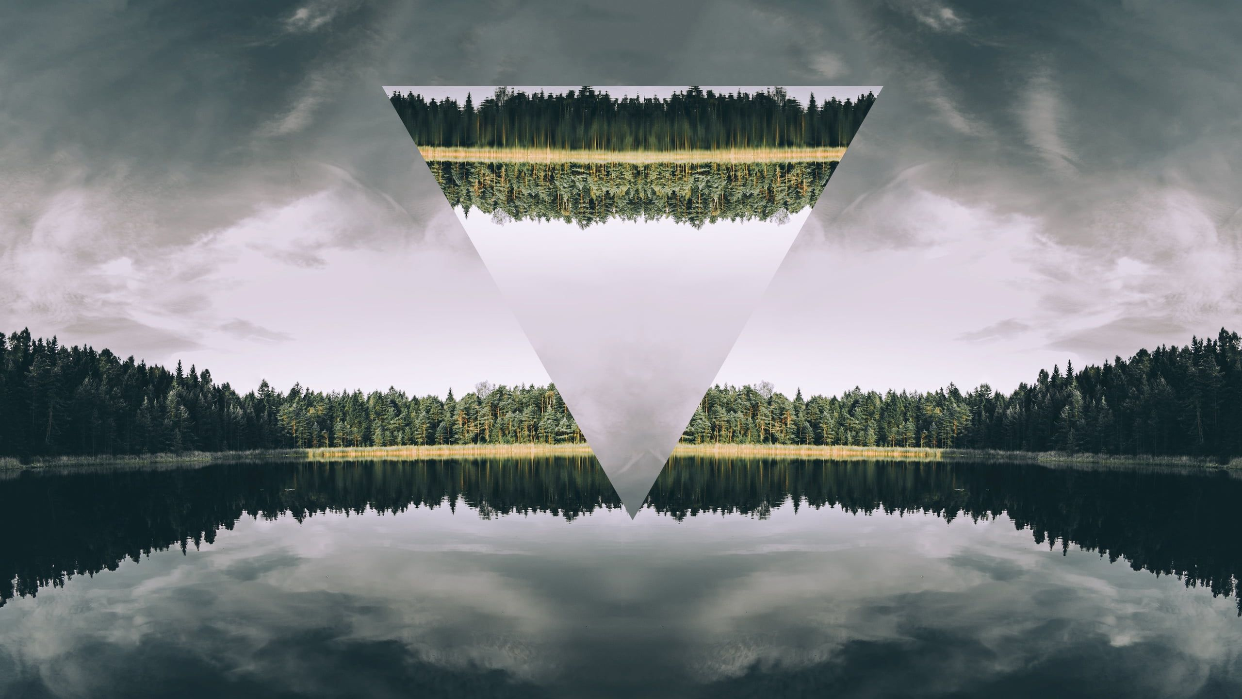 2560x1440 Body of water surrounded by green trees under white and grey ...