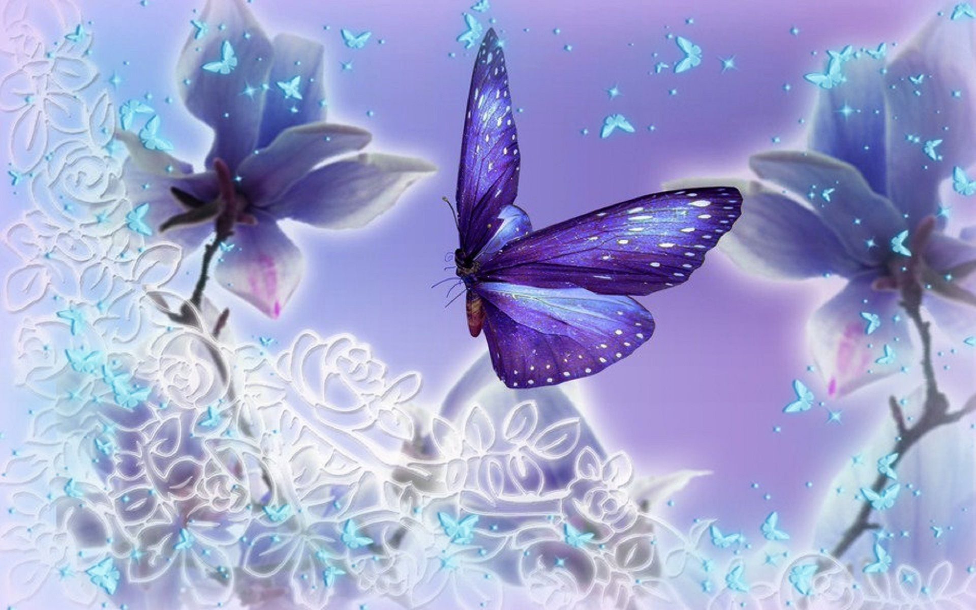 1920x1200 Download Purple Butterfly Wallpaper Images #n1s 1920x1200 px 448.80 ...