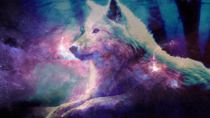 Cute Galaxy Wolf Wallpapers – Top Free Cute Galaxy Wolf Backgrounds