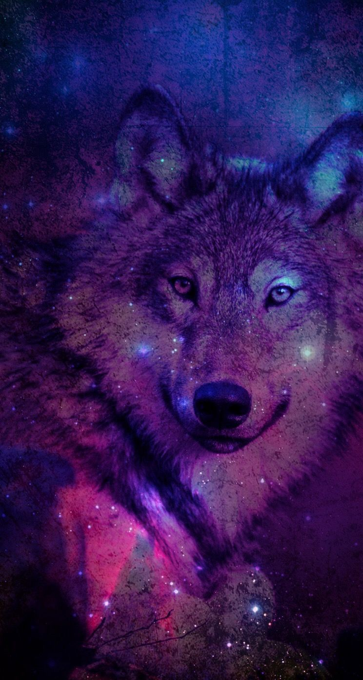 744x1392 Pin by Tanya Trotter on Wolf Art | Pinterest | Wolf, Wallpaper and ...