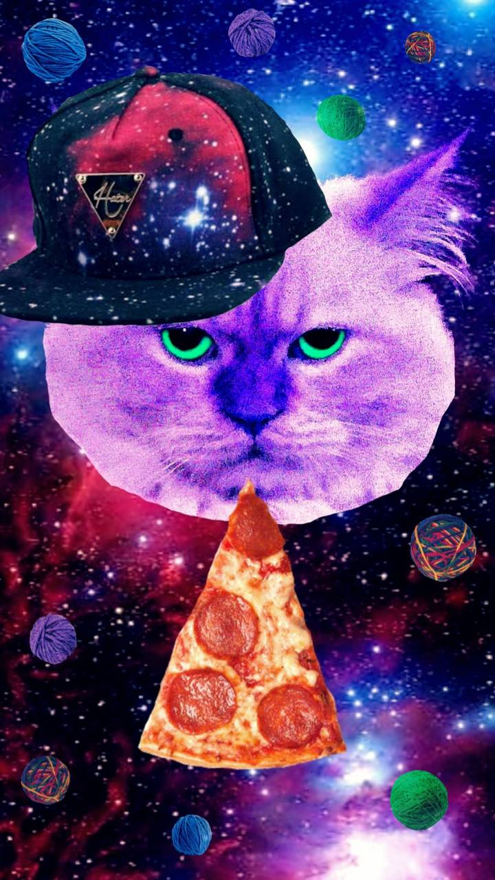 720x1280 PIZZA CAT IN SPACE Wallpaper by Kinjay92 - 88 - Free on ZEDGE™
