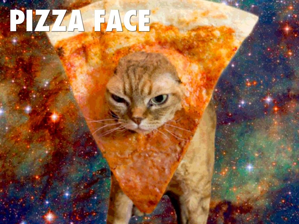 1024x768 Space Cat Wallpapers