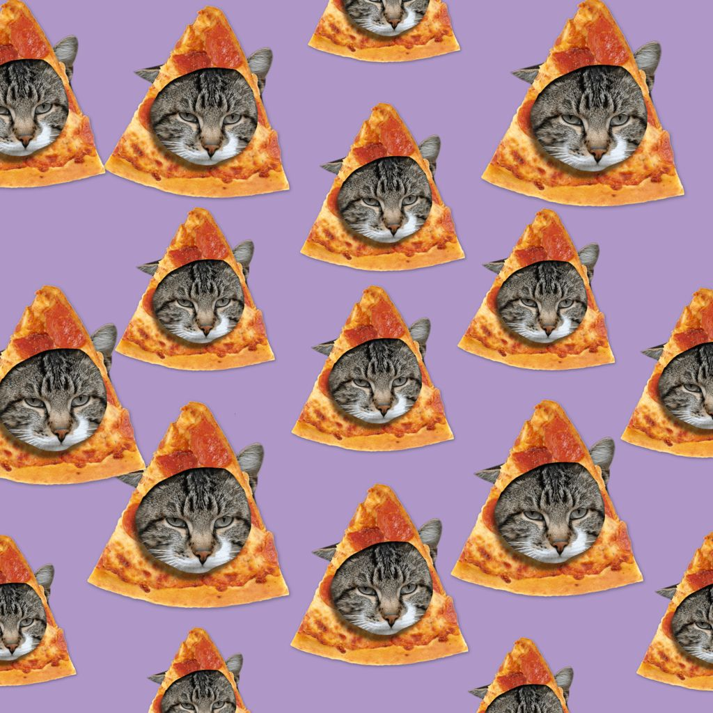 1024x1024 Pizza cats shared by Sydney Lin Lasher on We Heart It