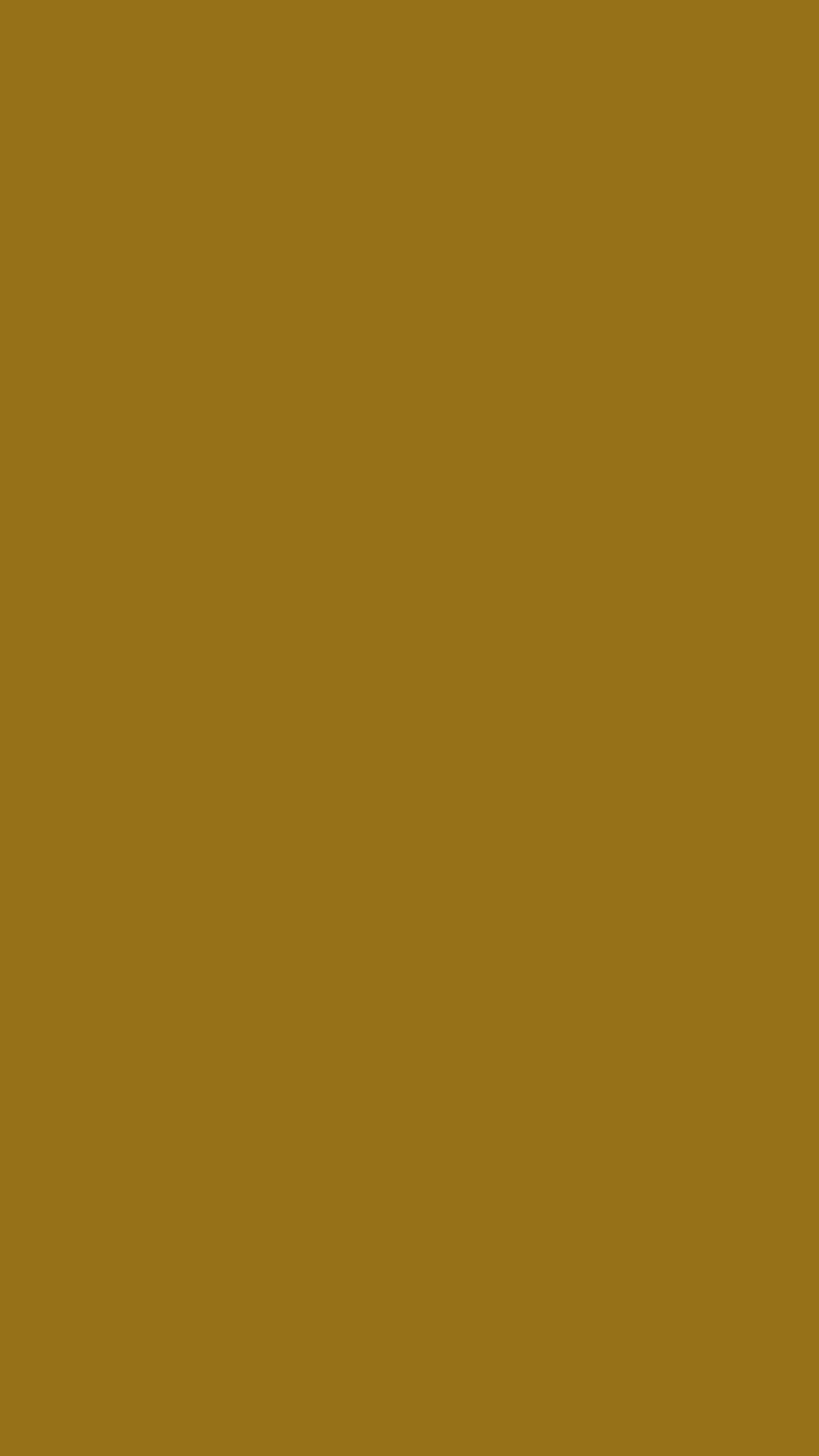 2160x3840 Bistre Brown Solid Color Background Wallpaper for Mobile Phone