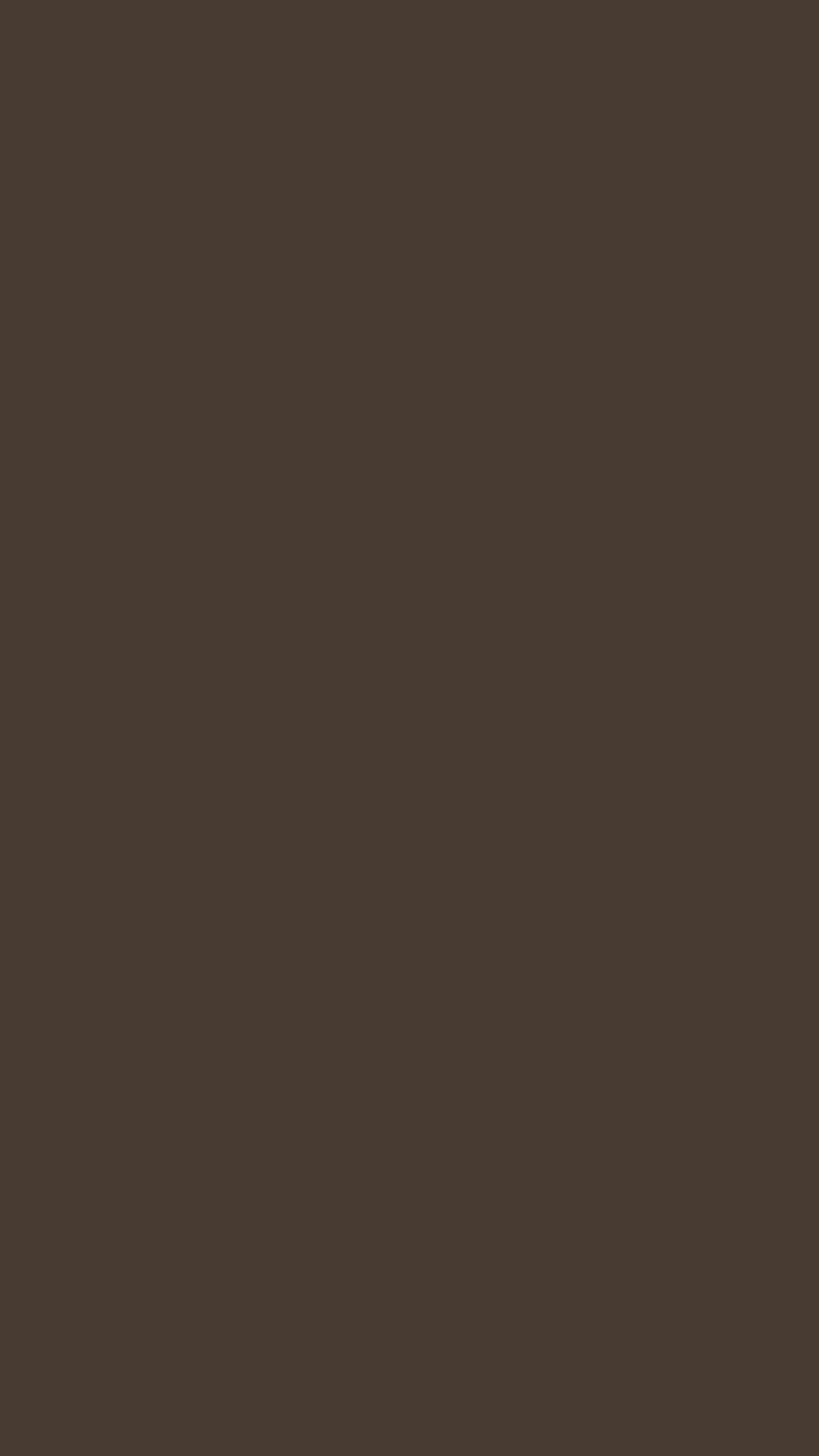 2160x3840 Taupe Solid Color Background Wallpaper for Mobile Phone