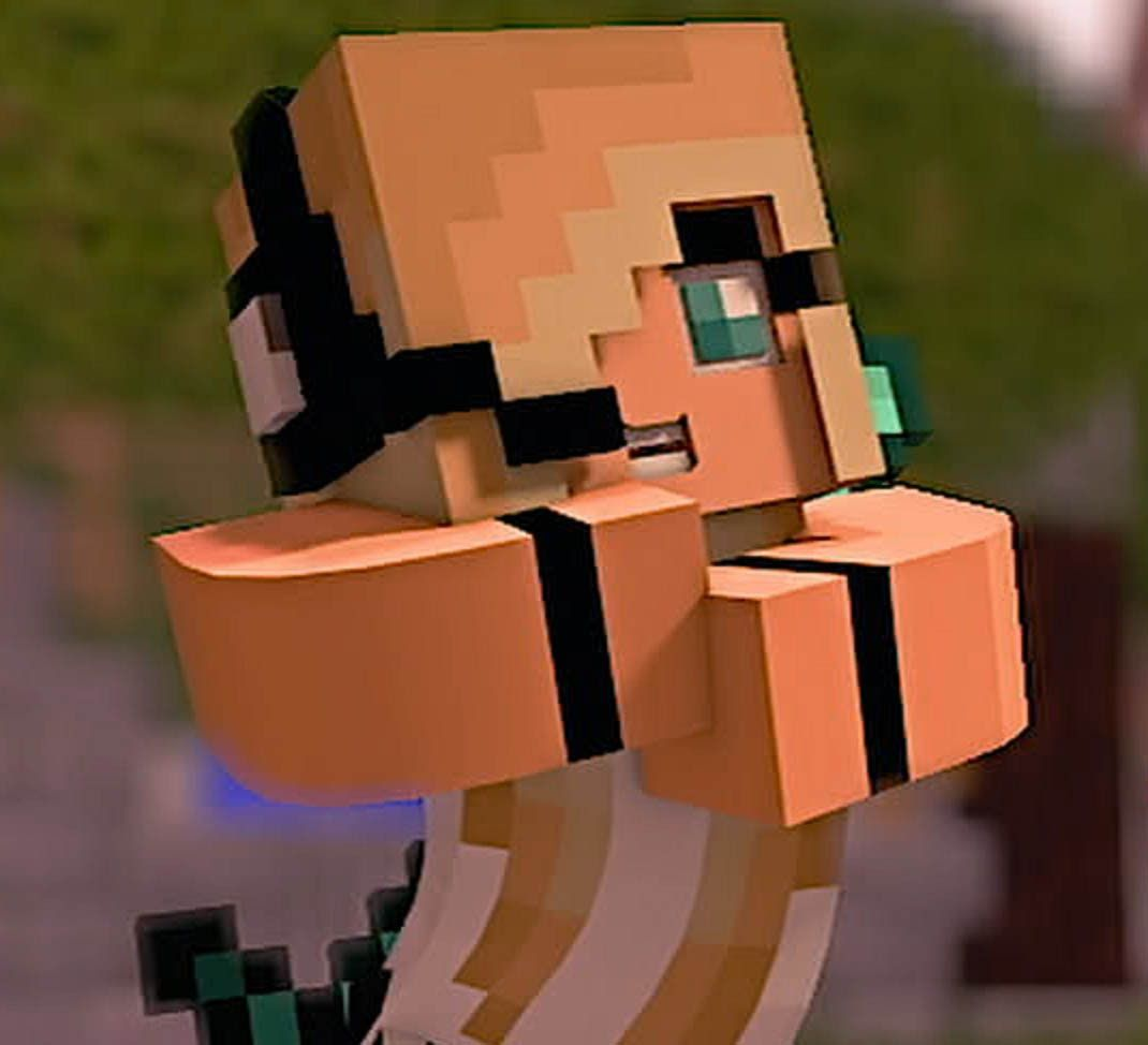 1070x974 Minecraft Videos and Songs:
