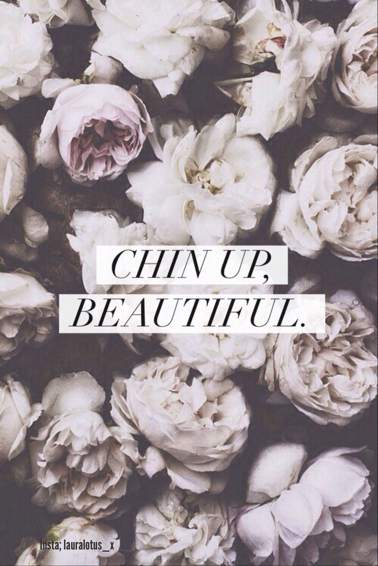 736x1102 Keep your chin up | Wallpapers ❤️ | Flowers, Floral, Peonies
