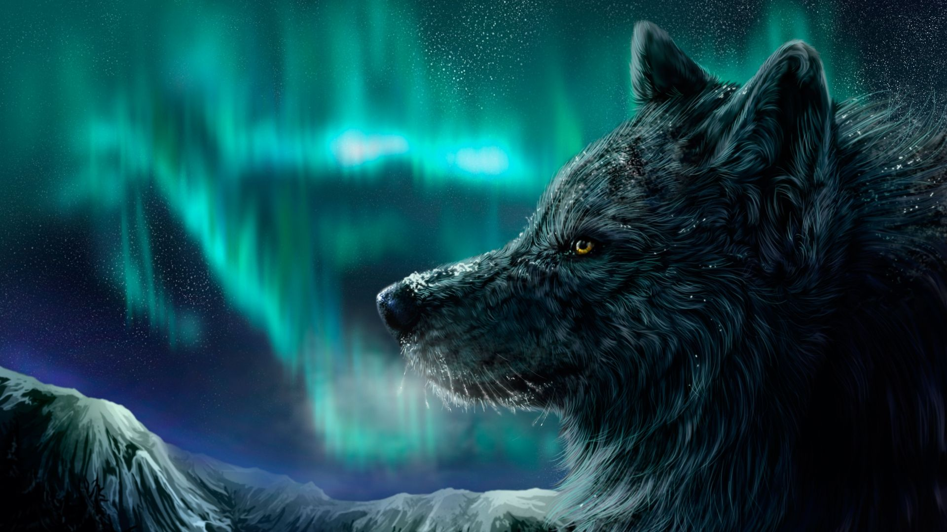 1920x1080 Wolf Wallpapers | Best Wallpapers