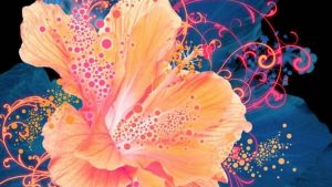 Abstract Flower Phone Wallpapers – Top Free Abstract Flower Phone Backgrounds