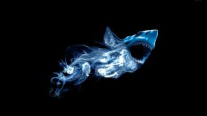 Abstract Shark Wallpapers – Top Free Abstract Shark Backgrounds