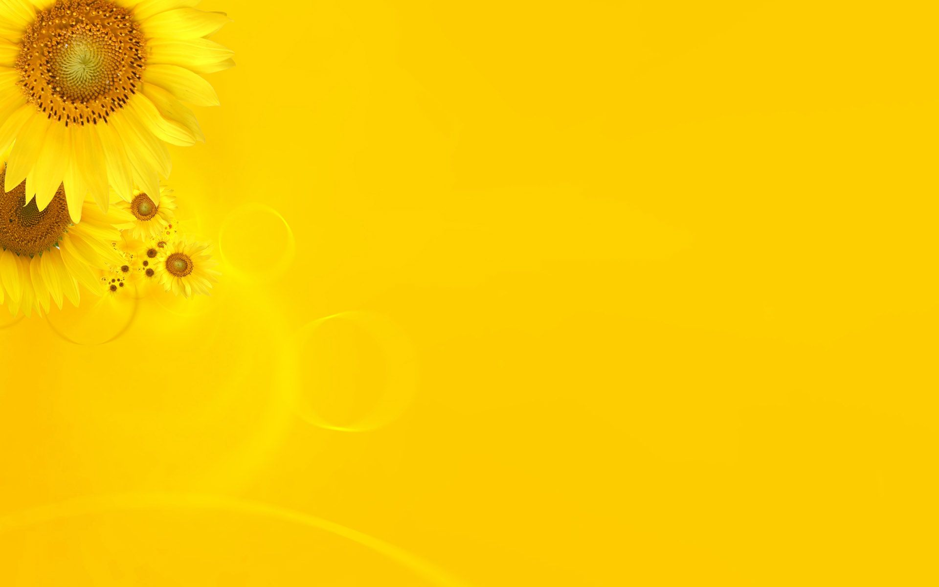 1920x1200 30 HD Yellow Wallpapers