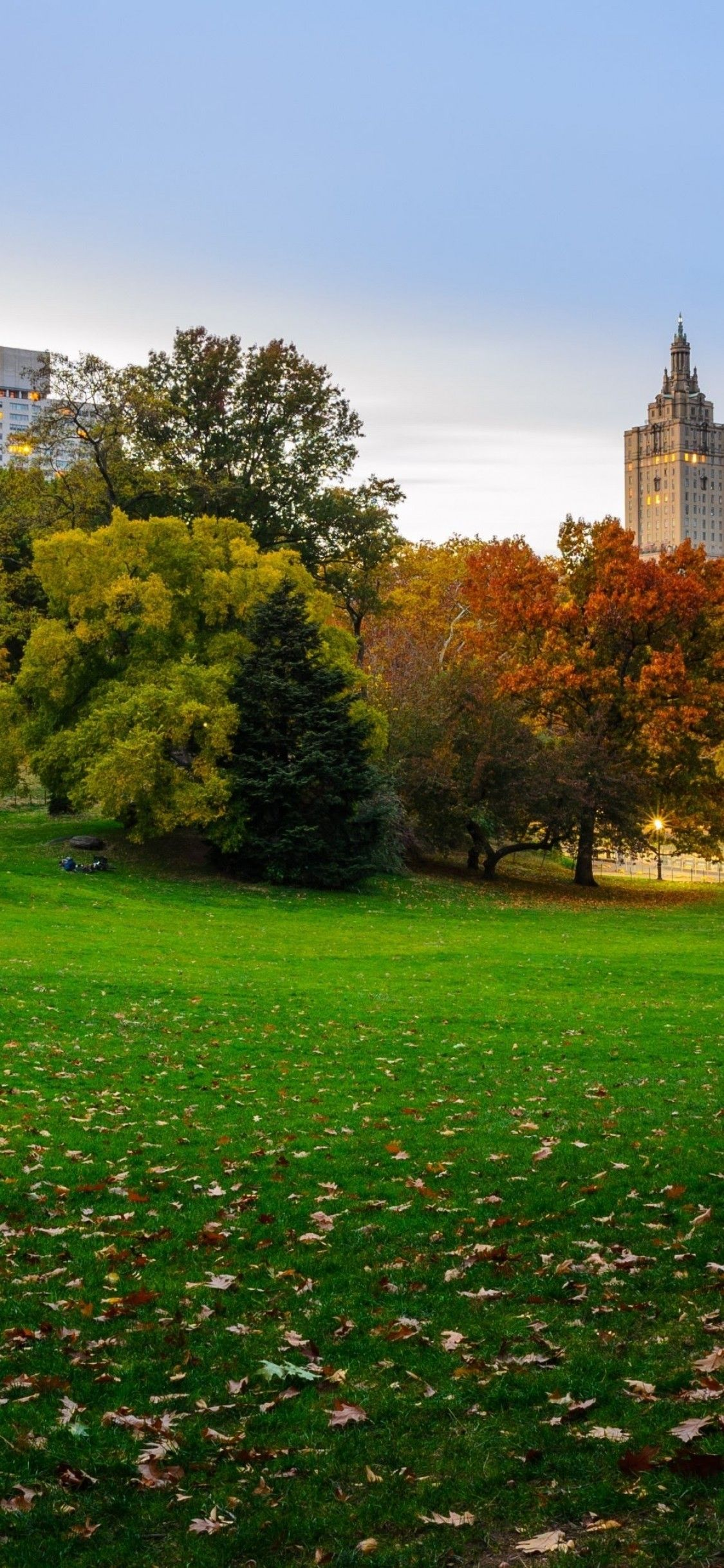 1125x2436 Download 1125x2436 New York Central Park, Buildings ...