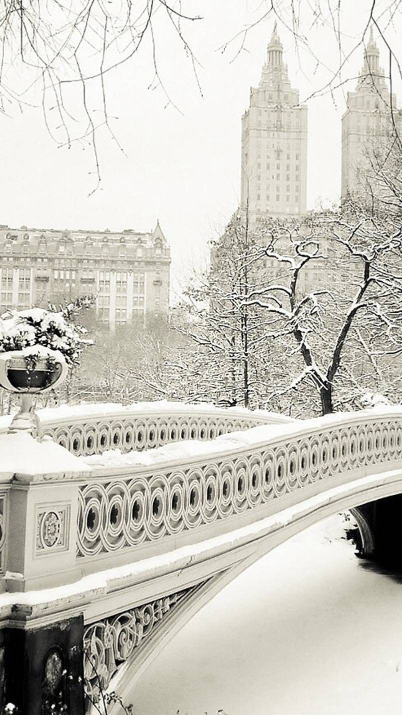 805x1431 Central Park Snow in 2019 | New poster, Winter wonderland ...