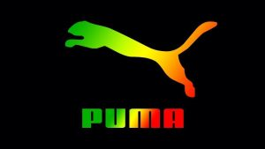 Cool Puma Wallpapers – Top Free Cool Puma Backgrounds