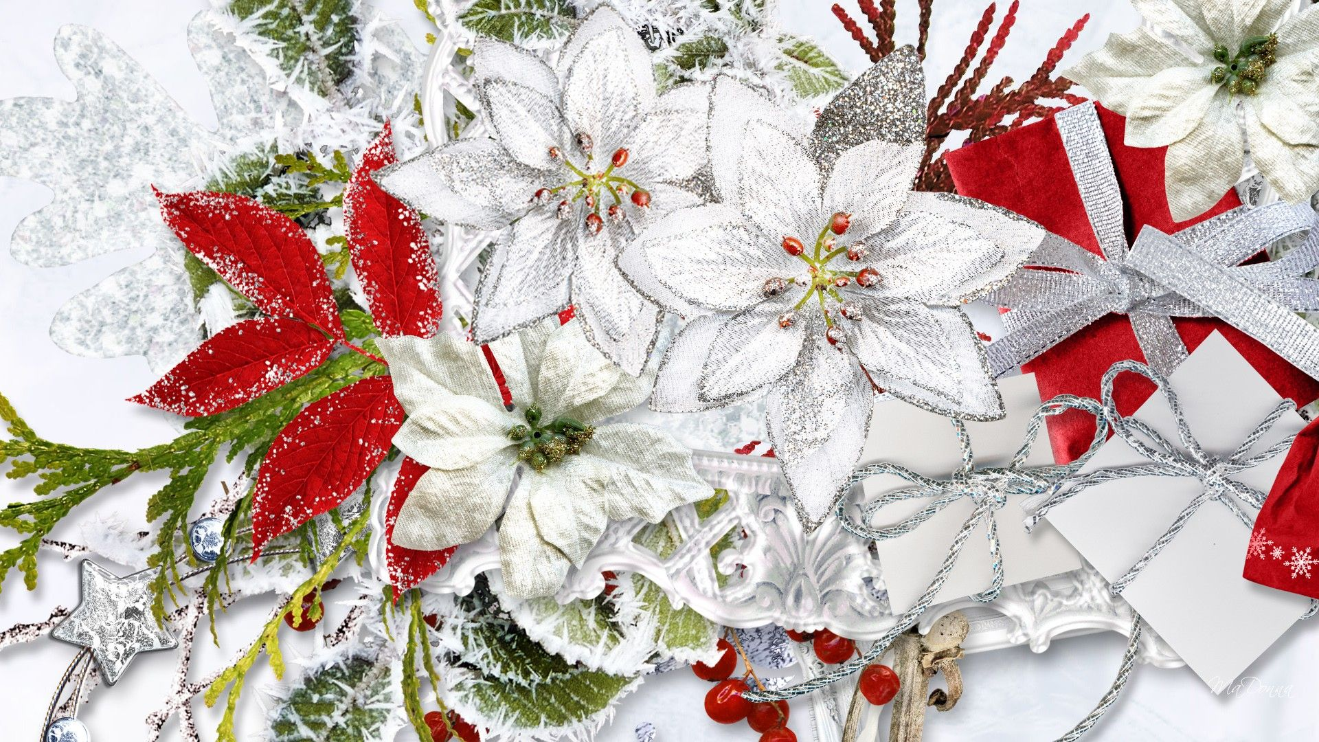 1920x1080 Flowers Christmas Flowers 1920x1080px – 100% Quality HD ...