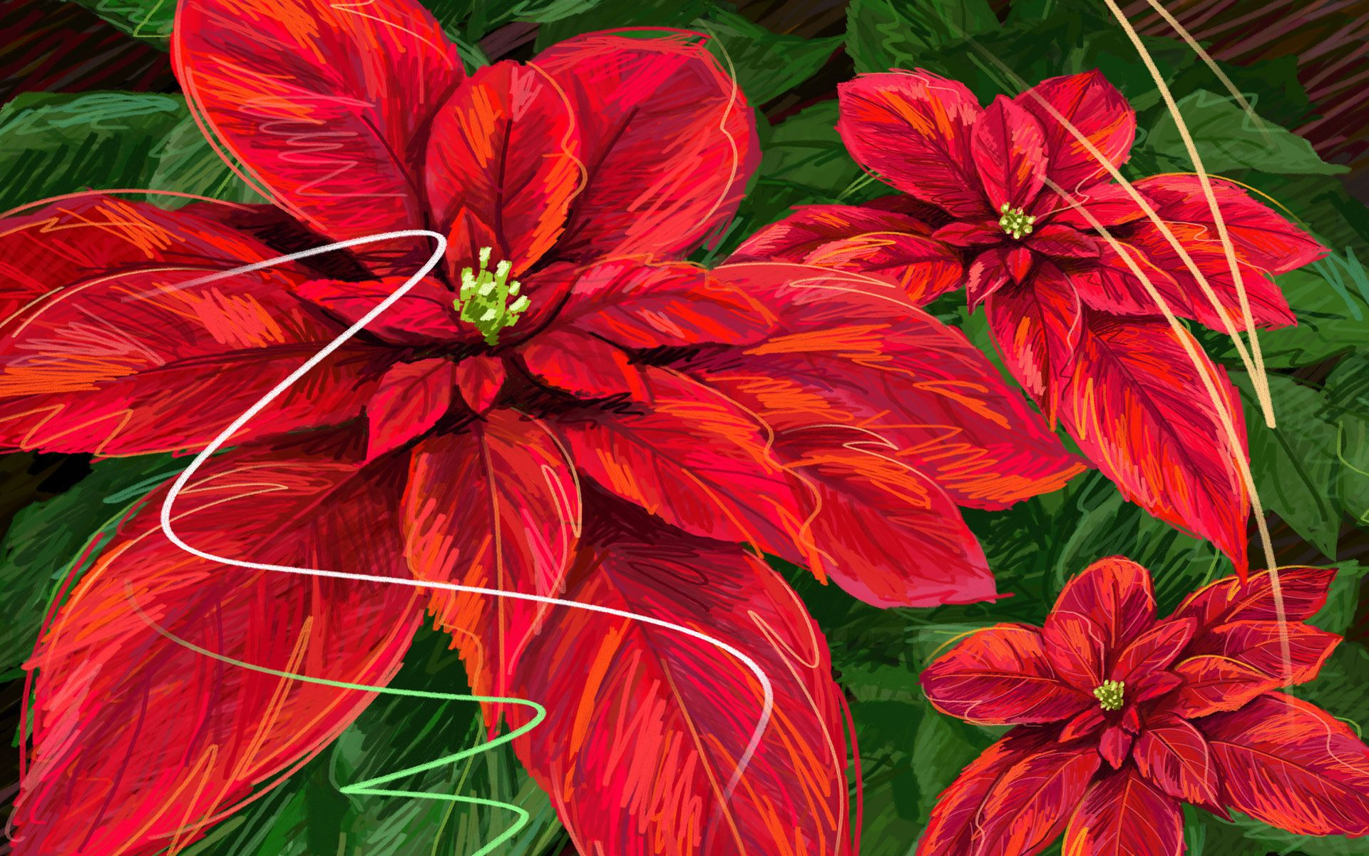 1920x1200 Flower Hd Wallpaper - Christmas Wallpaper With Flowers, Hd ...