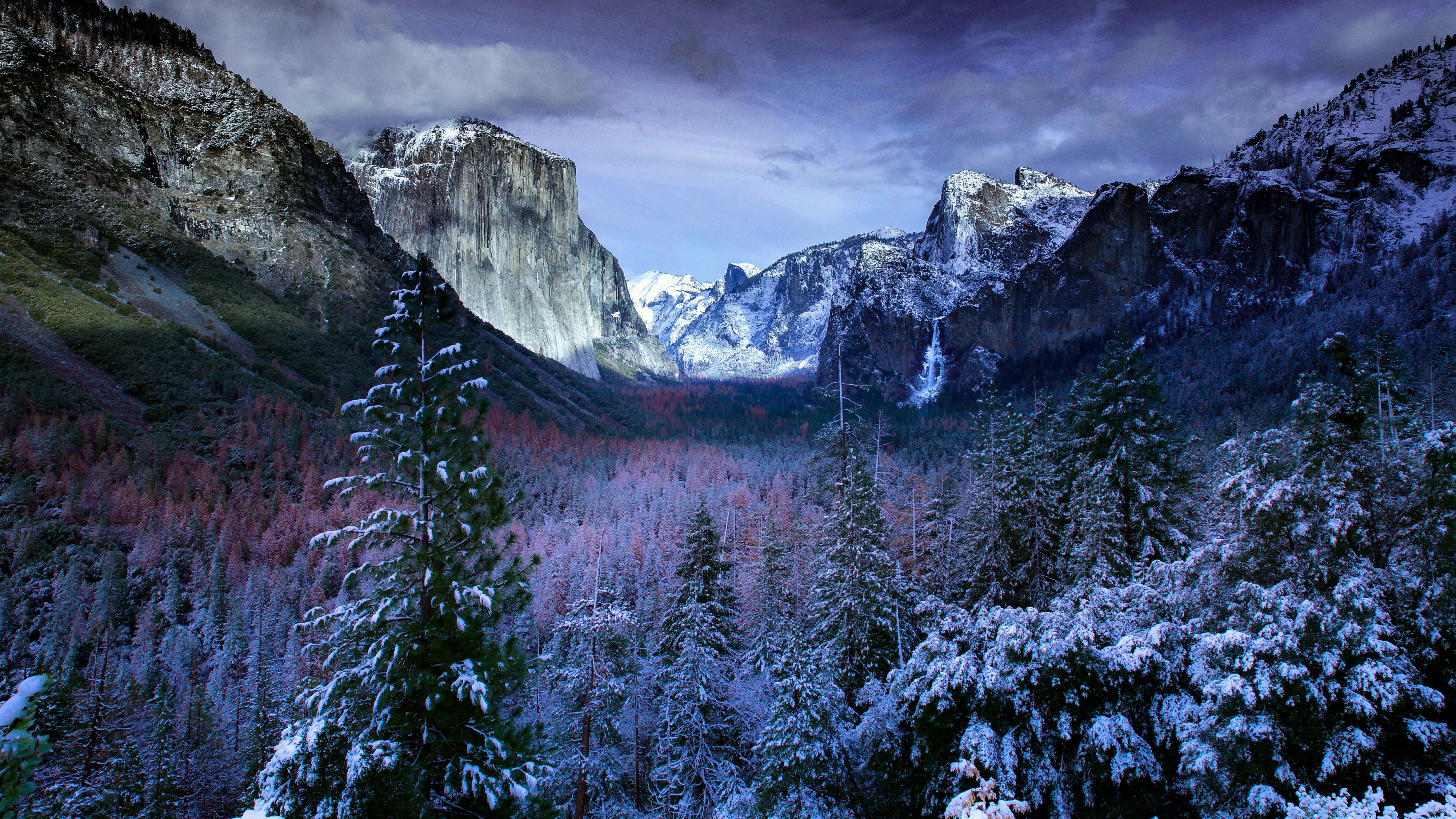 7680x4320 7680x4320 Winter Mountains And Trees 8K Wallpaper, HD Nature ...