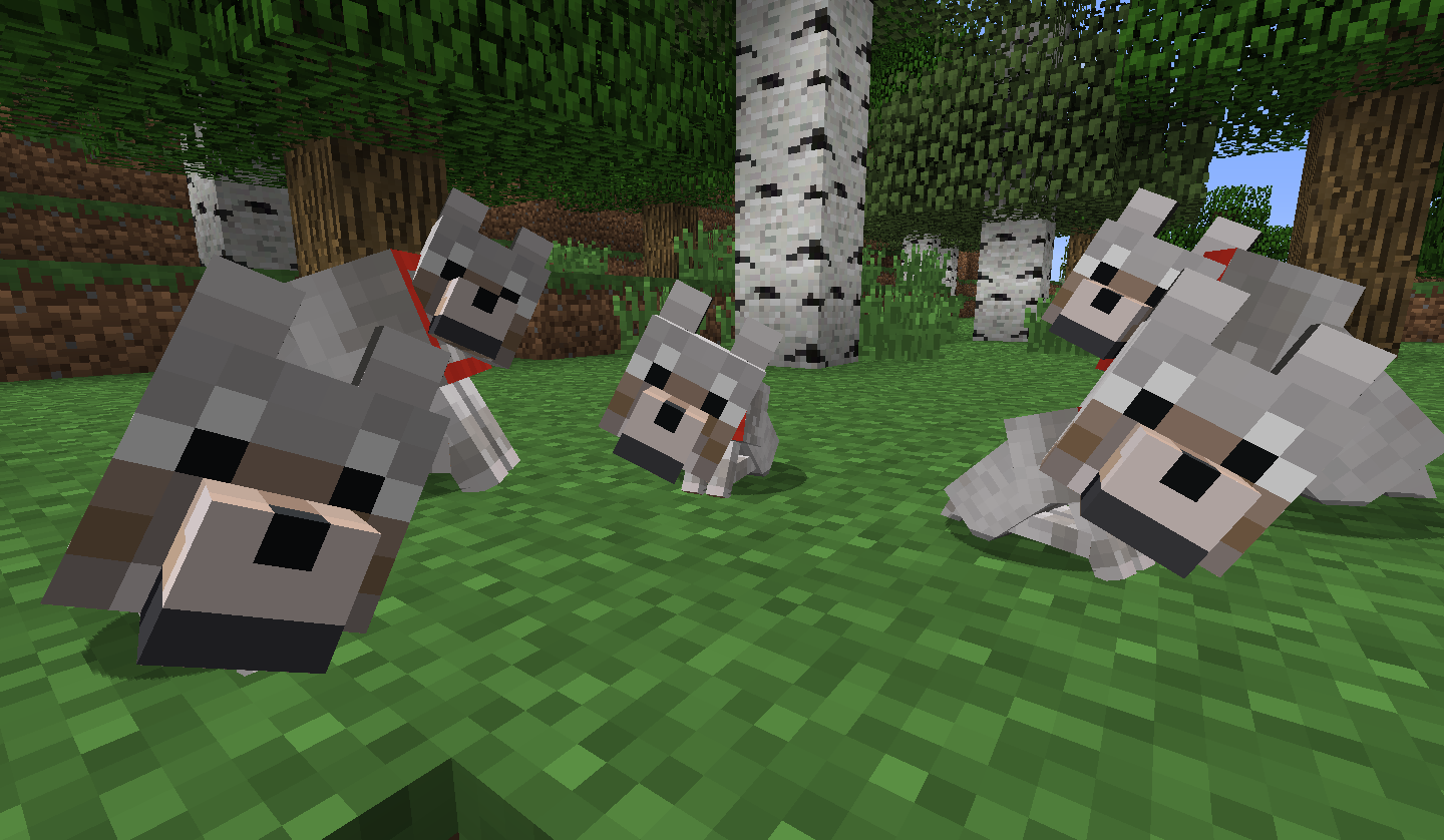 1440x838 Minecraft Wolf Wallpapers